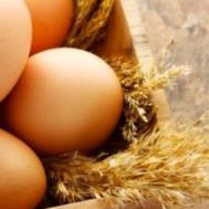 Zdjęcie przedstawia jajka wielkanocne